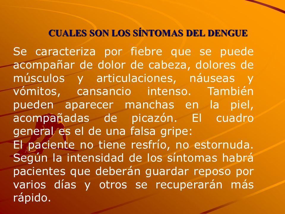 CUALES SON LOS SÍNTOMAS DEL DENGUE