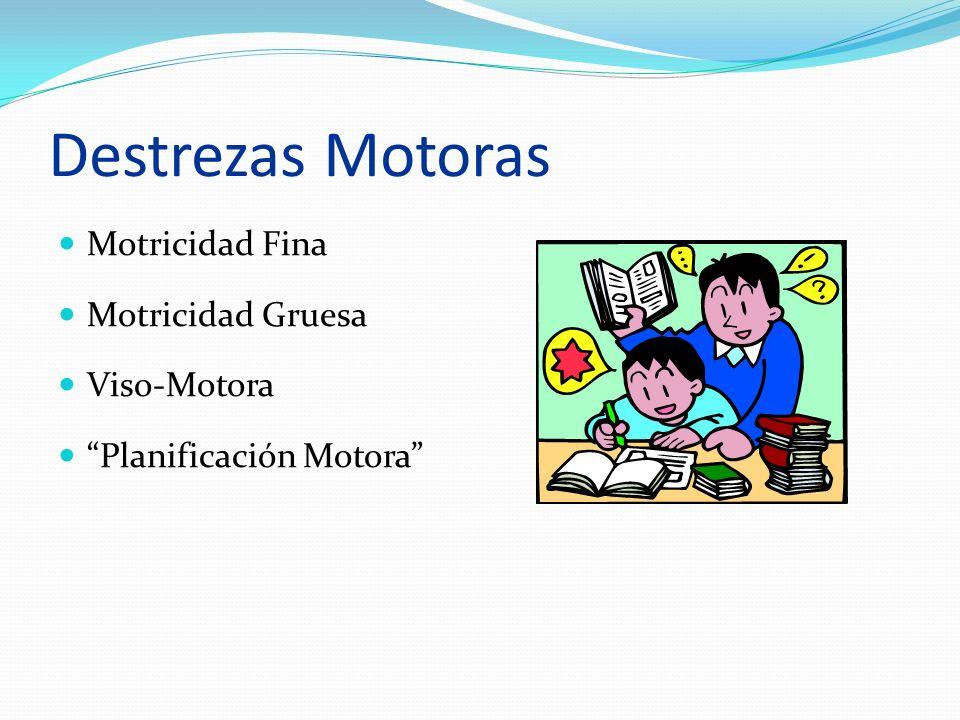 Destrezas Motoras Motricidad Fina Motricidad Gruesa Viso-Motora