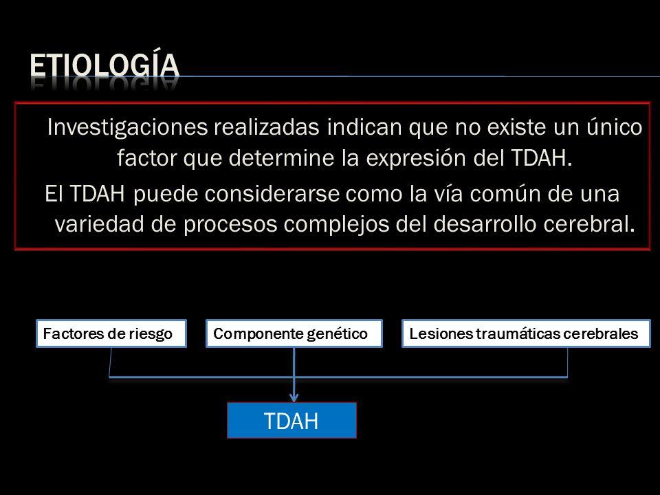 etiología Investigaciones realizadas indican que no existe un único factor que determine la expresión del TDAH.