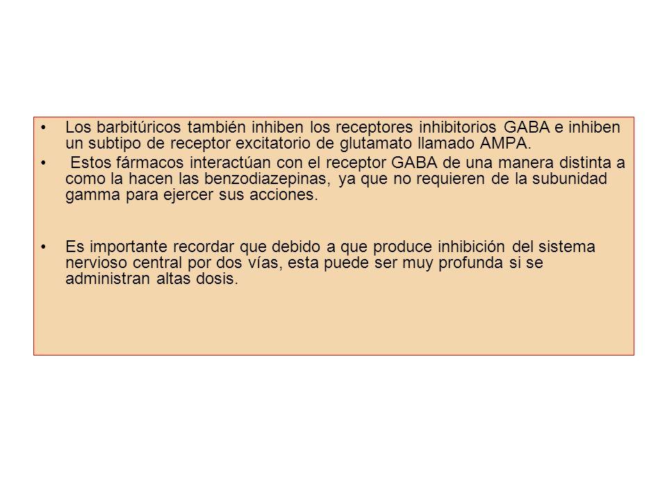 Los barbitúricos también inhiben los receptores inhibitorios GABA e inhiben un subtipo de receptor excitatorio de glutamato llamado AMPA.