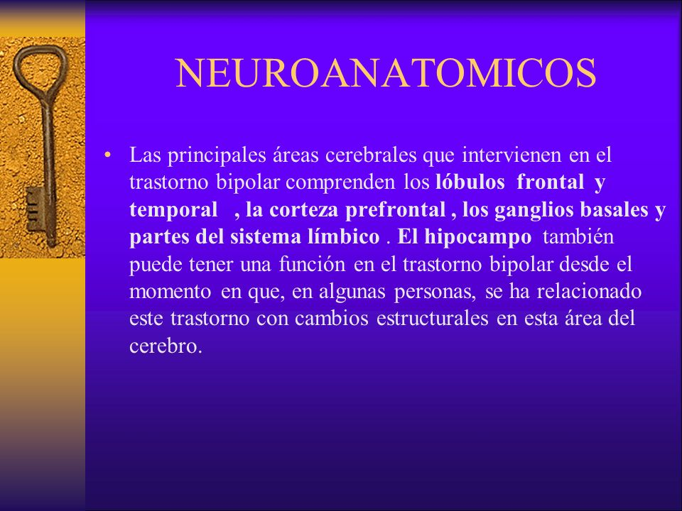 NEUROANATOMICOS