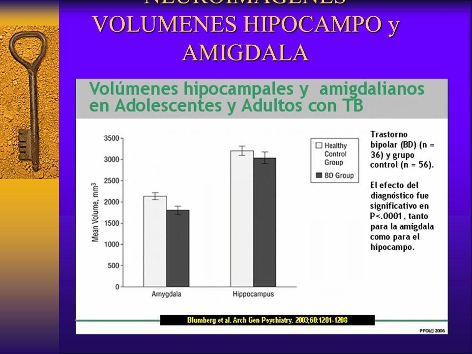 NEUROIMAGENES VOLUMENES HIPOCAMPO y AMIGDALA