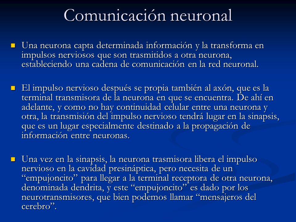 Comunicación neuronal