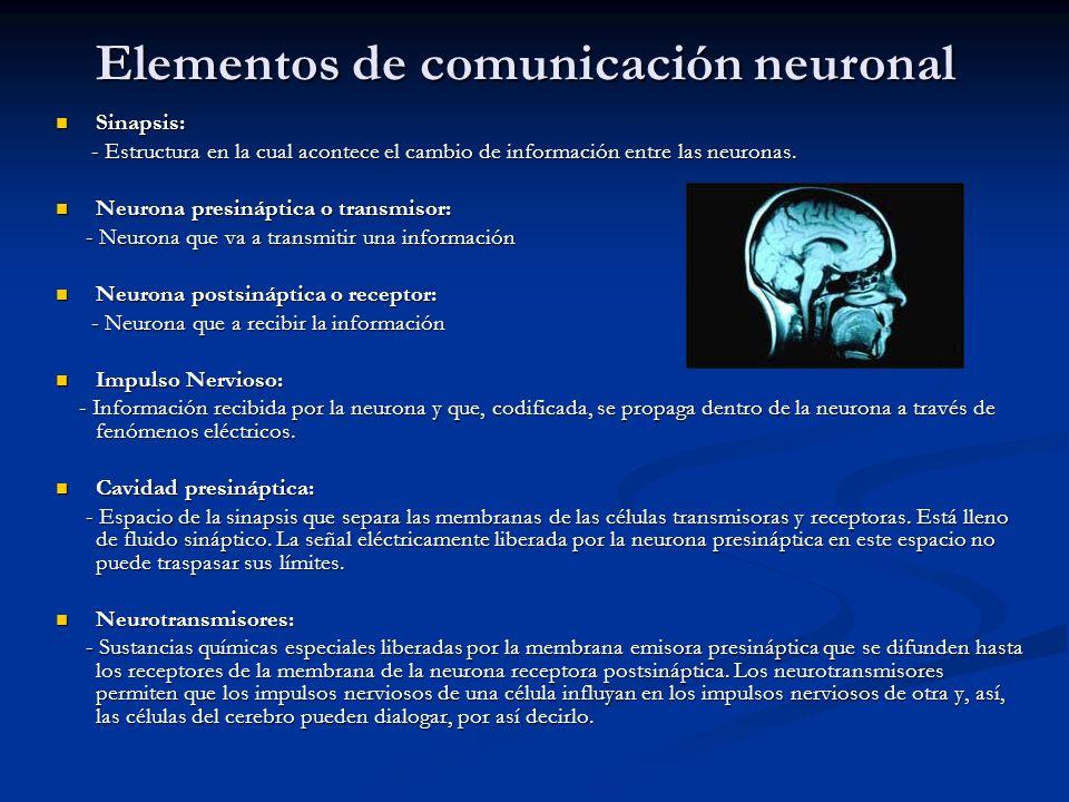 Elementos de comunicación neuronal