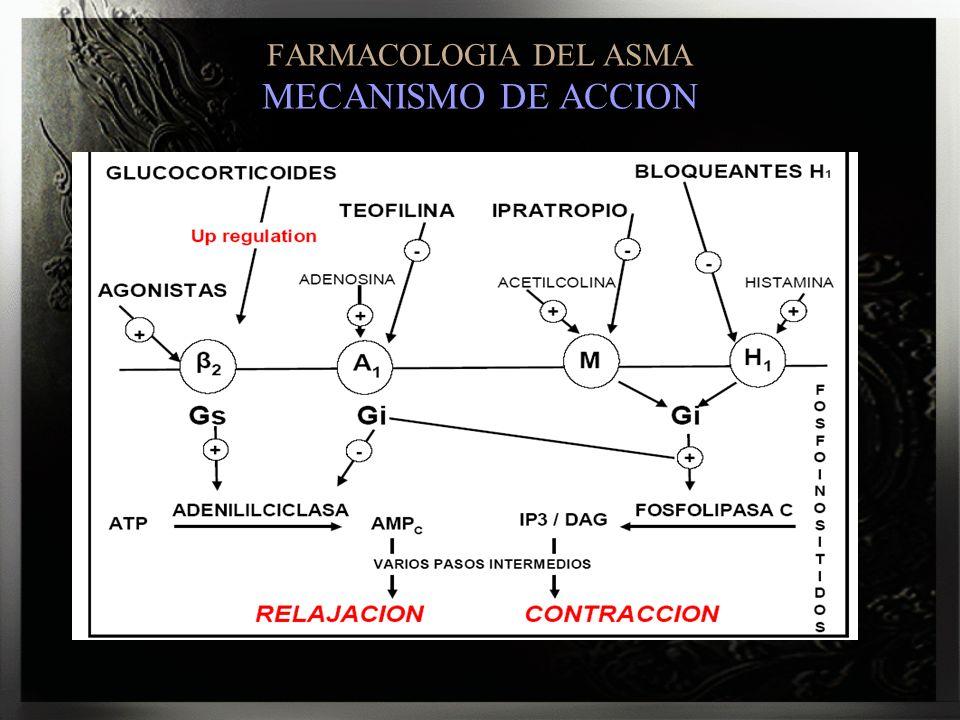FARMACOLOGIA DEL ASMA MECANISMO DE ACCION