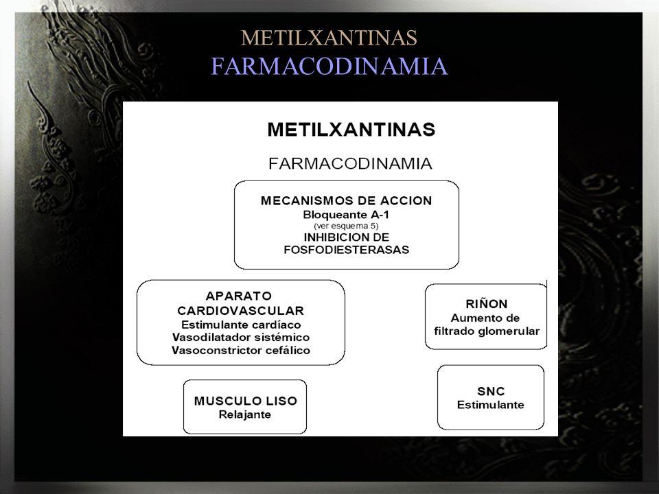 METILXANTINAS FARMACODINAMIA
