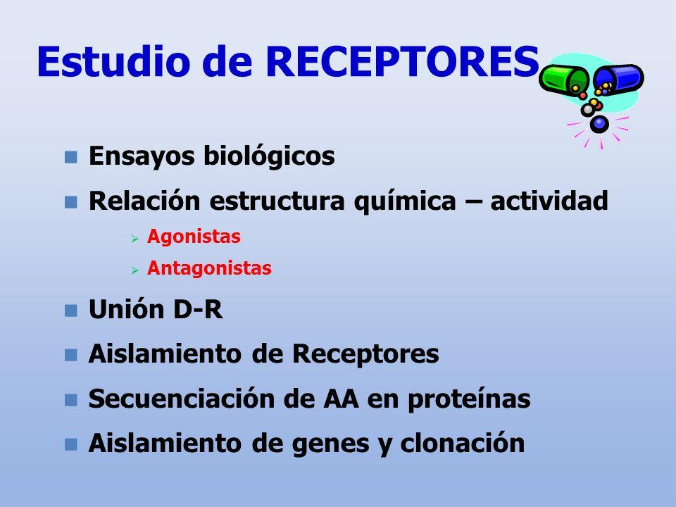 Estudio de RECEPTORES Ensayos biológicos