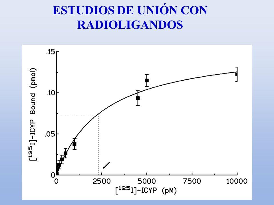 ESTUDIOS DE UNIÓN CON RADIOLIGANDOS