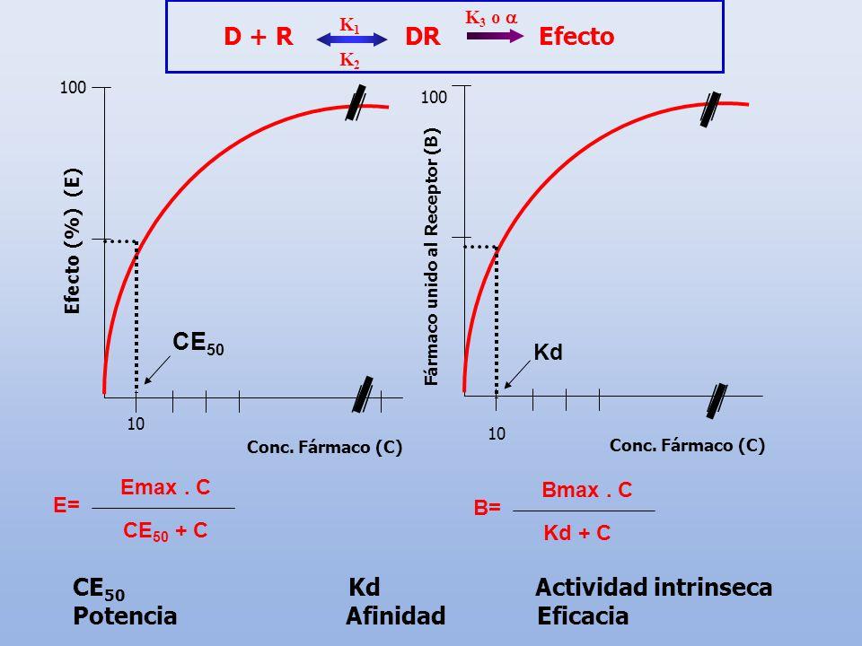 // // // // Kd D + R DR Efecto CE50 CE50 Kd Actividad intrinseca