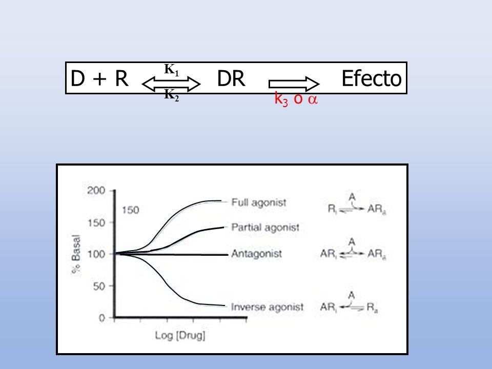 D + R DR EfectoK1. K2. k3 o 