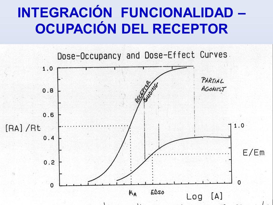 INTEGRACIÓN FUNCIONALIDAD – OCUPACIÓN DEL RECEPTOR