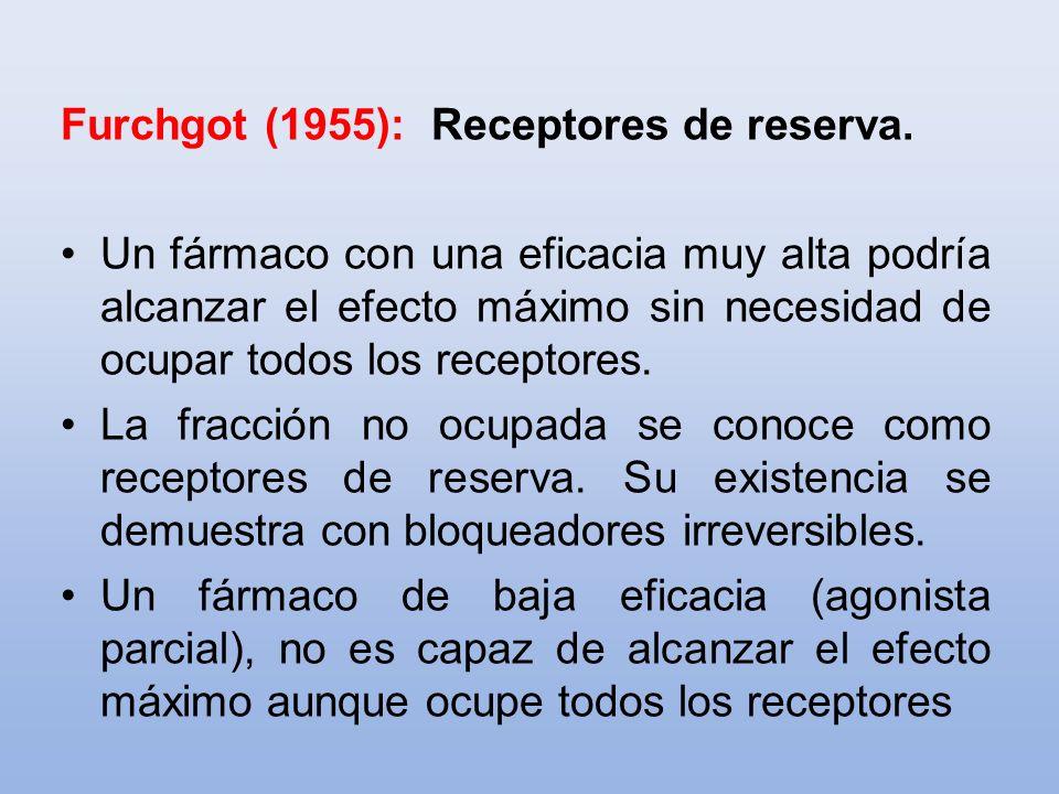 Furchgot (1955): Receptores de reserva.