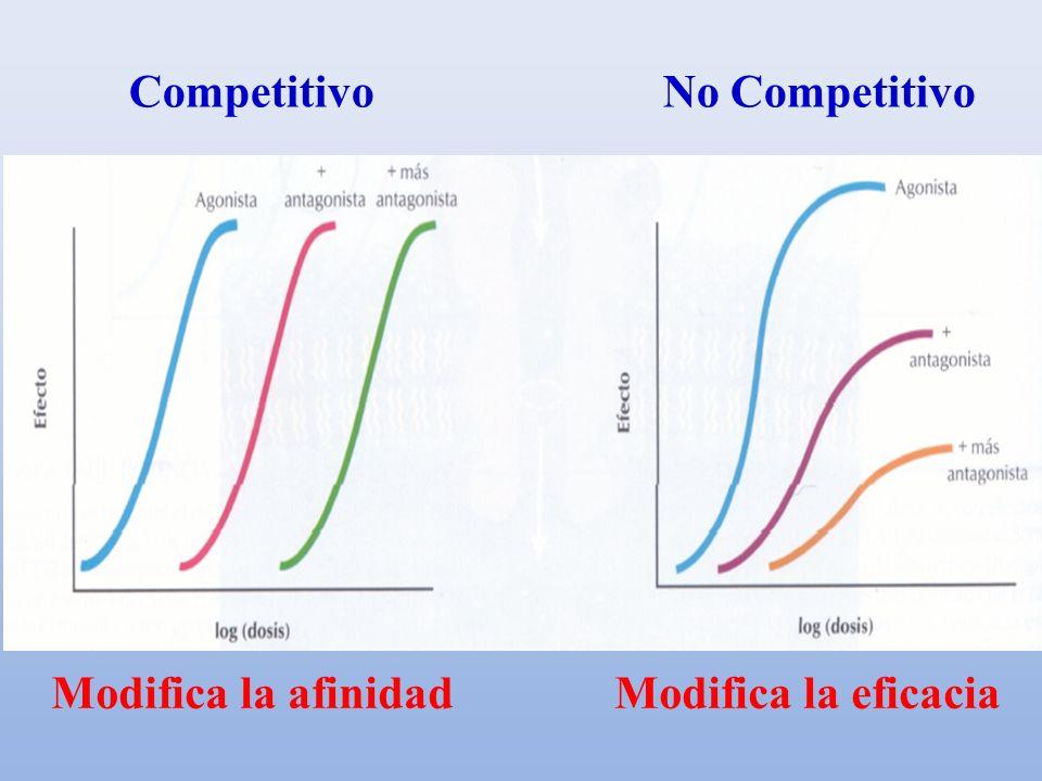 Competitivo No Competitivo
