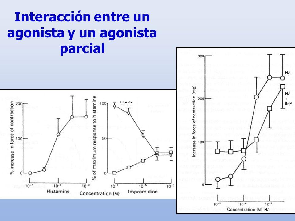 Interacción entre un agonista y un agonista parcial