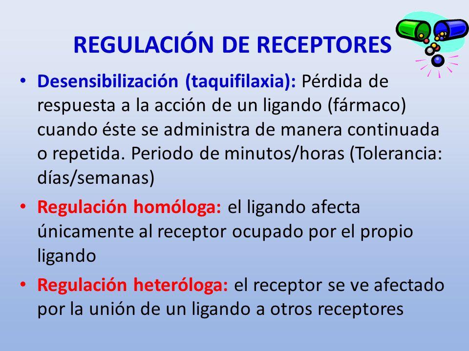 REGULACIÓN DE RECEPTORES