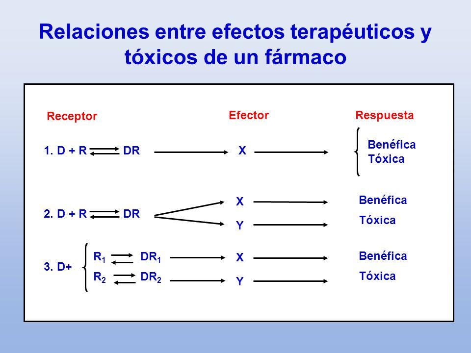 Relaciones entre efectos terapéuticos y tóxicos de un fármaco
