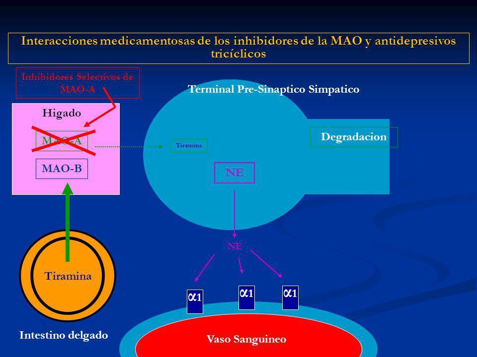 Inhibidores Selectivos de MAO-A
