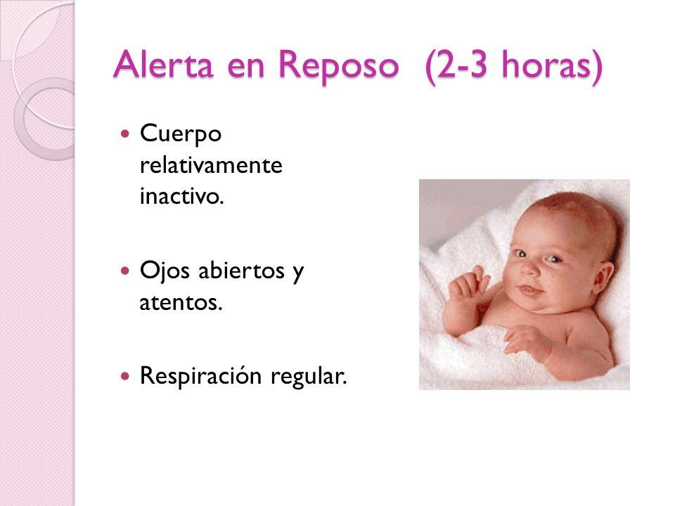 Alerta en Reposo (2-3 horas)