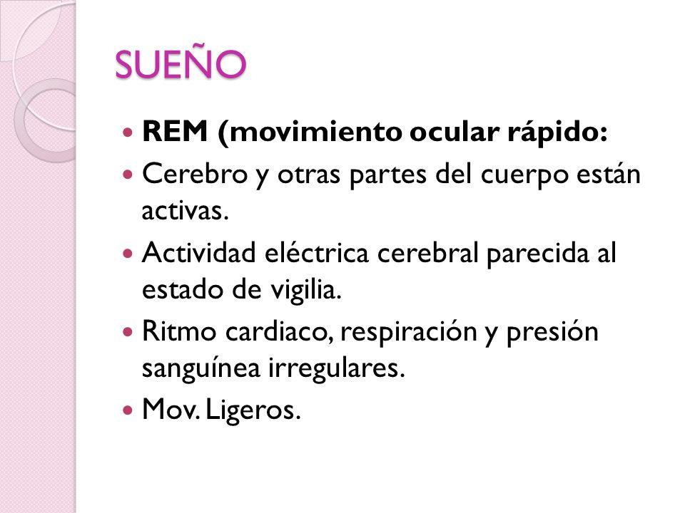 SUEÑO REM (movimiento ocular rápido: