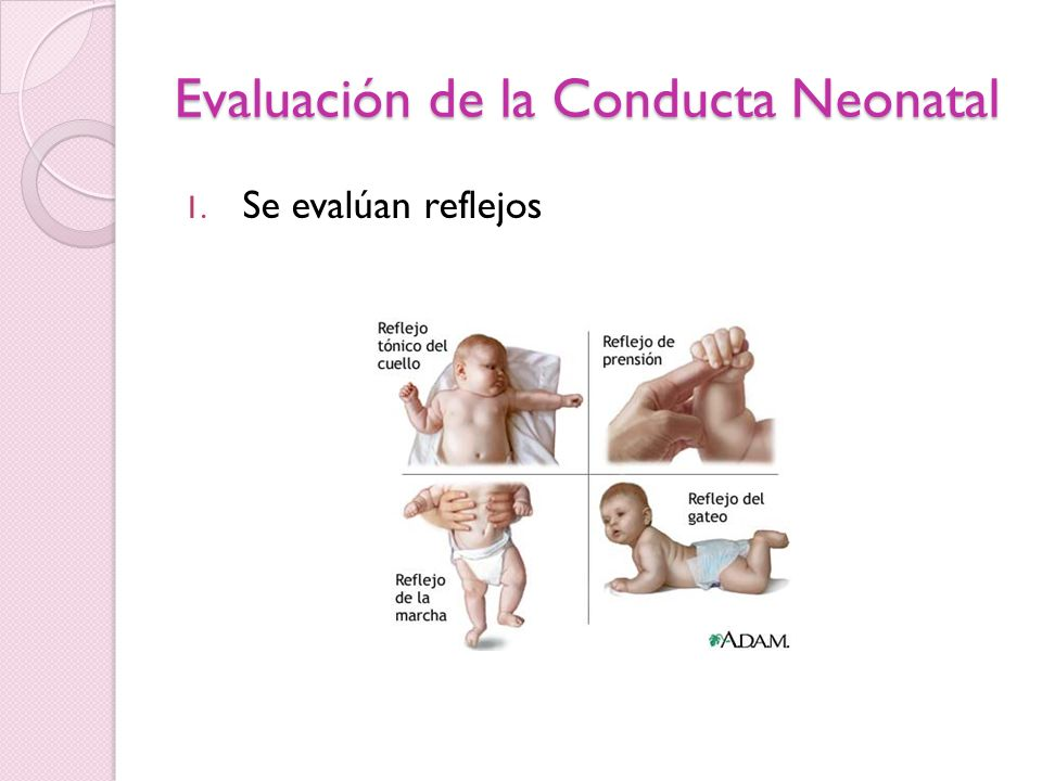 Evaluación de la Conducta Neonatal