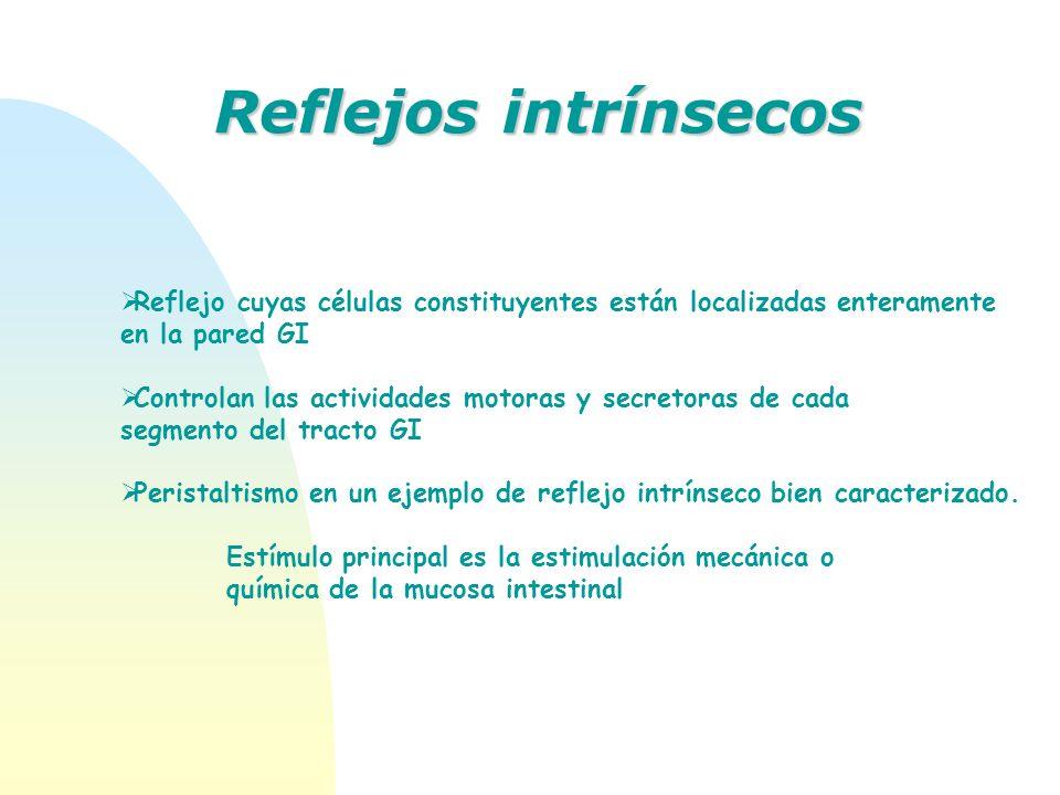 Reflejos intrínsecos Reflejo cuyas células constituyentes están localizadas enteramente. en la pared GI.