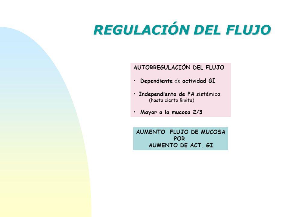 REGULACIÓN DEL FLUJO