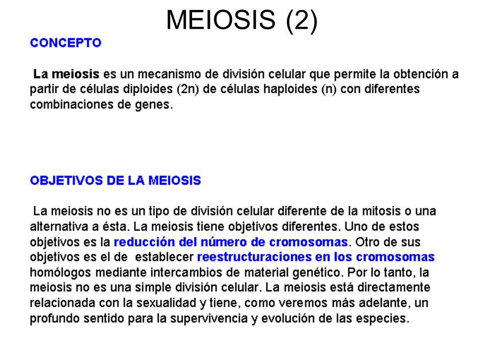 MEIOSIS (2)