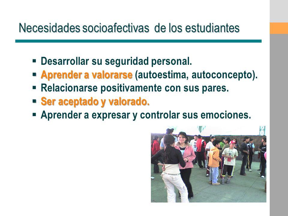 Necesidades socioafectivas de los estudiantes