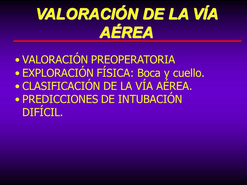 VALORACIÓN DE LA VÍA AÉREA