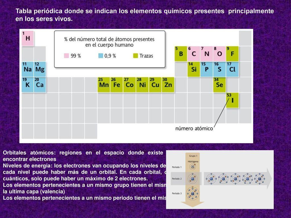 Qumica biolgica bioqumica ppt video online descargar 6 tabla peridica donde se indican los elementos qumicos urtaz Images