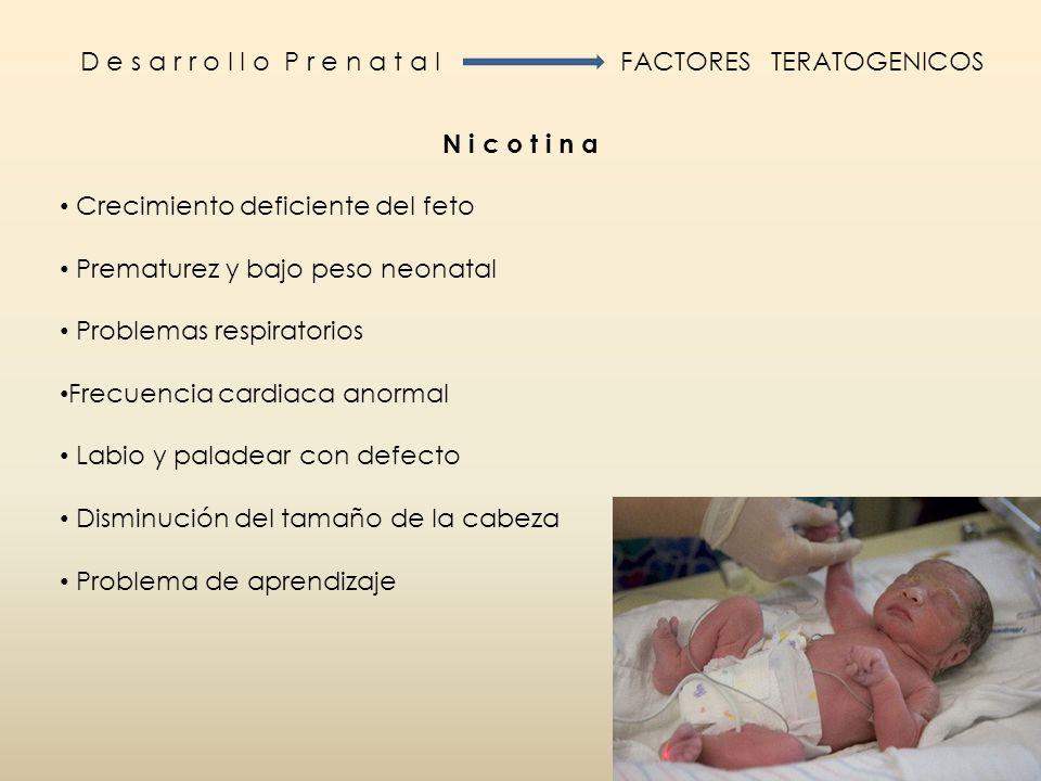 D e s a r r o l l o P r e n a t a l FACTORES TERATOGENICOS. N i c o t i n a. Crecimiento deficiente del feto.