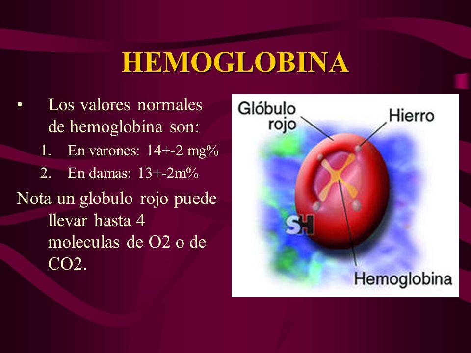HEMOGLOBINA Los valores normales de hemoglobina son: