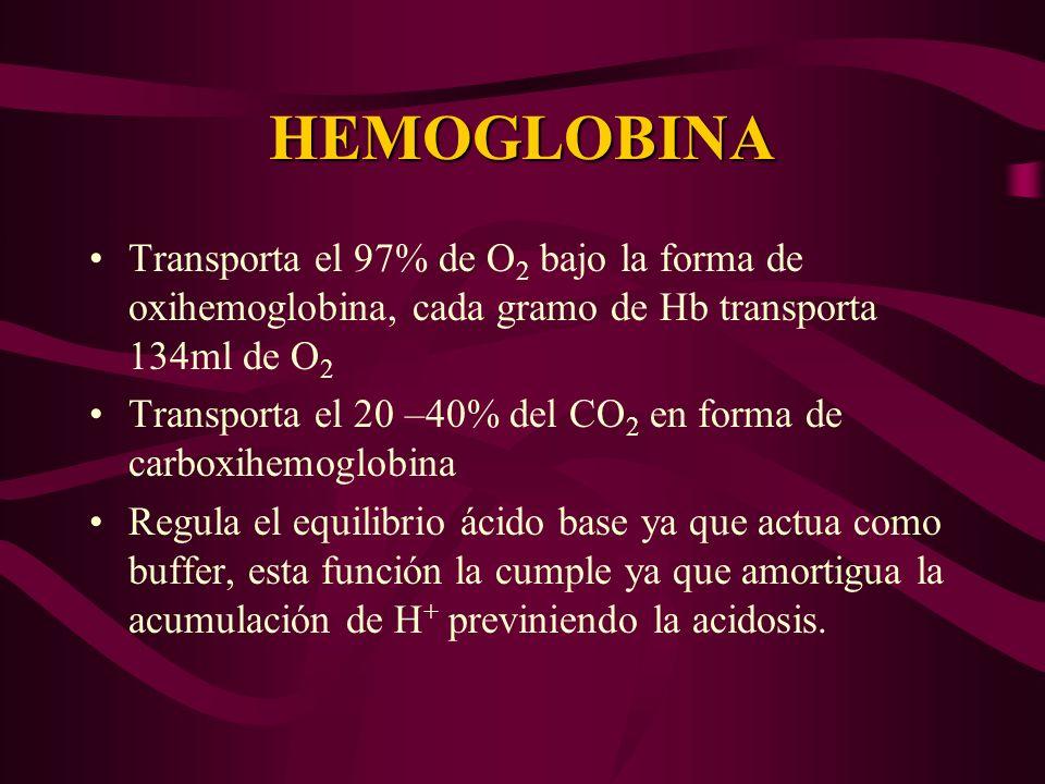HEMOGLOBINA Transporta el 97% de O2 bajo la forma de oxihemoglobina, cada gramo de Hb transporta 134ml de O2.