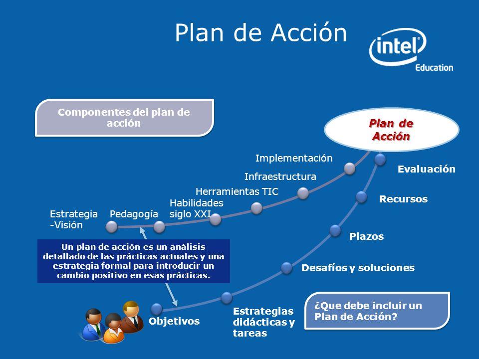Componentes del plan de acción