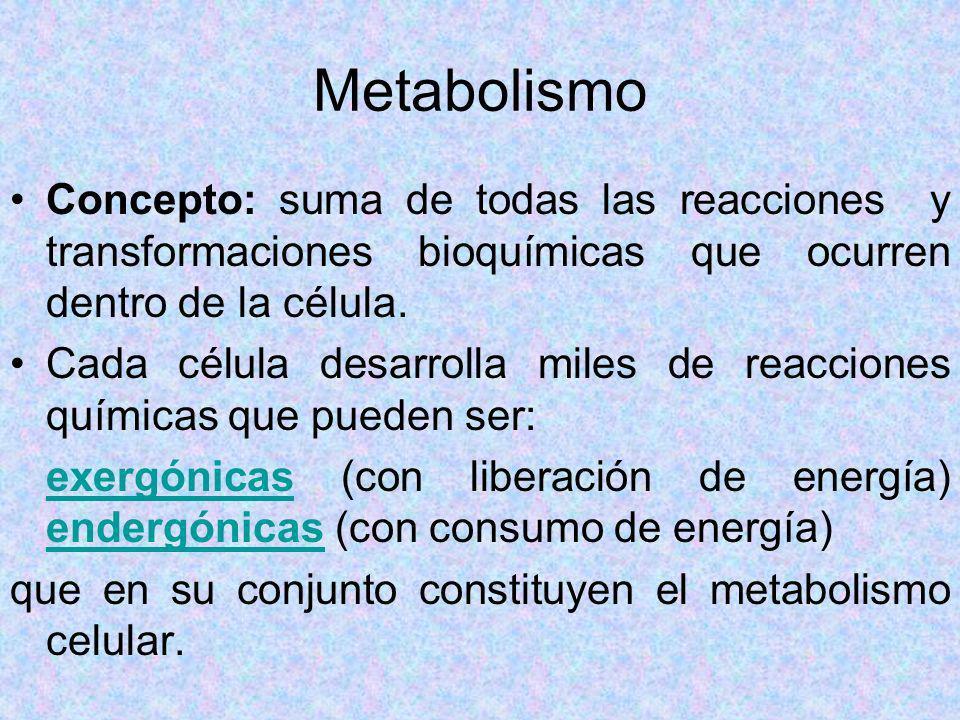 Metabolismo Concepto: suma de todas las reacciones y transformaciones bioquímicas que ocurren dentro de la célula.