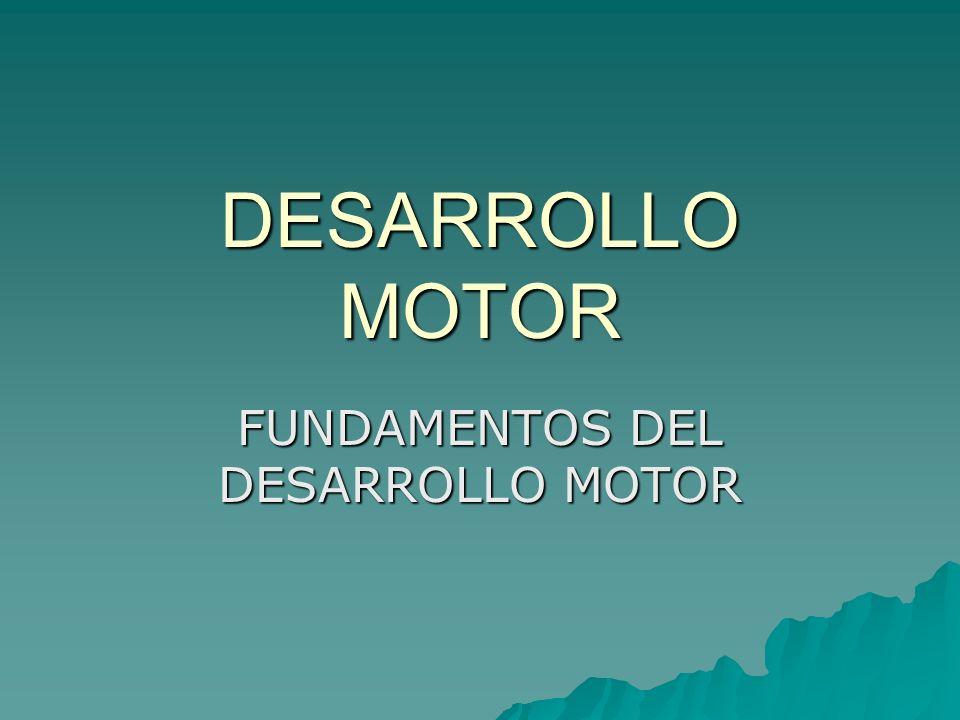 FUNDAMENTOS DEL DESARROLLO MOTOR