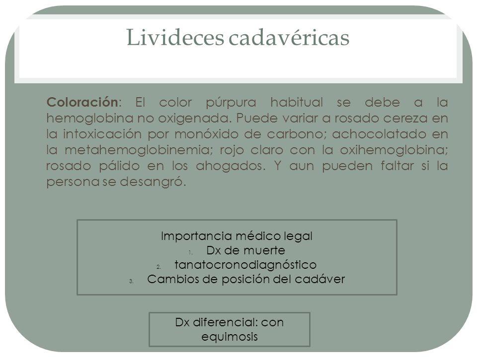 Livideces cadavéricas
