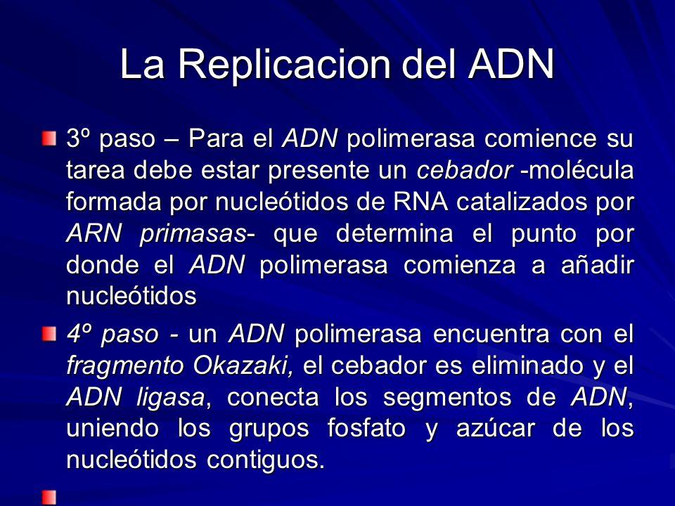 La Replicacion del ADN