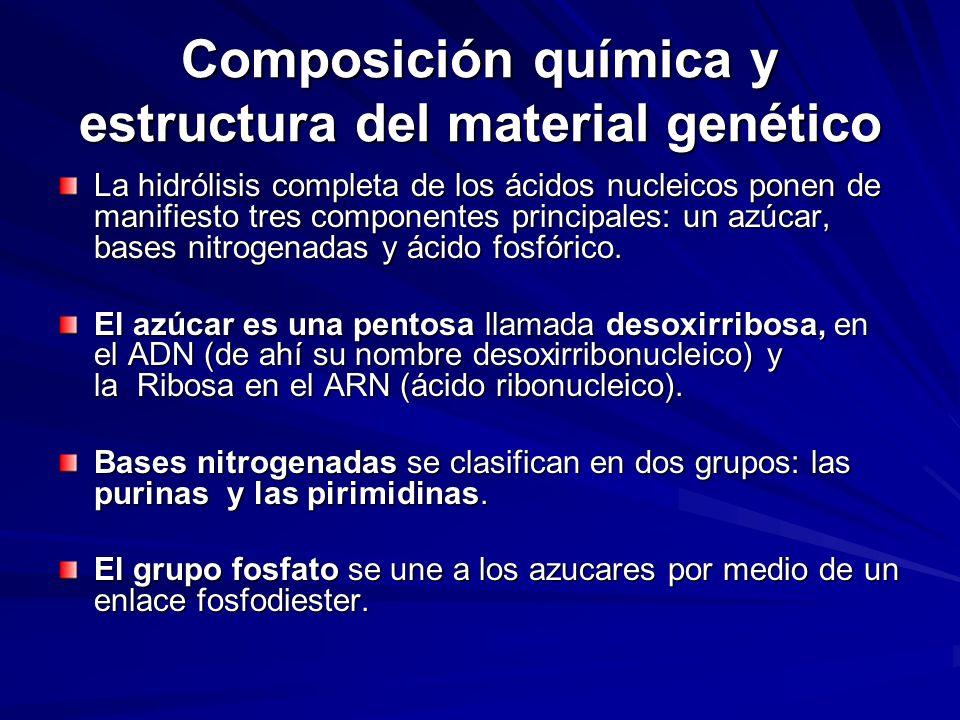 Composición química y estructura del material genético