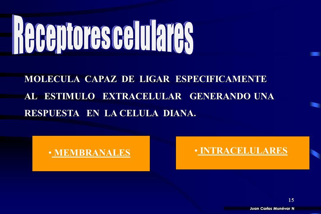 Receptores celulares MOLECULA CAPAZ DE LIGAR ESPECIFICAMENTE