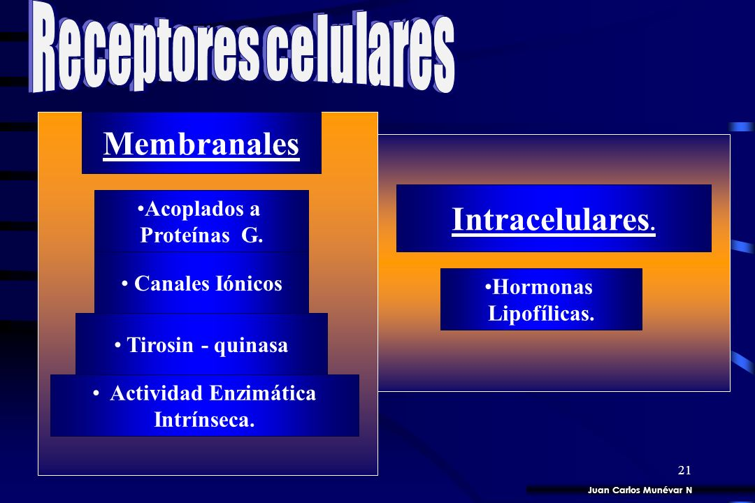 Membranales Intracelulares.