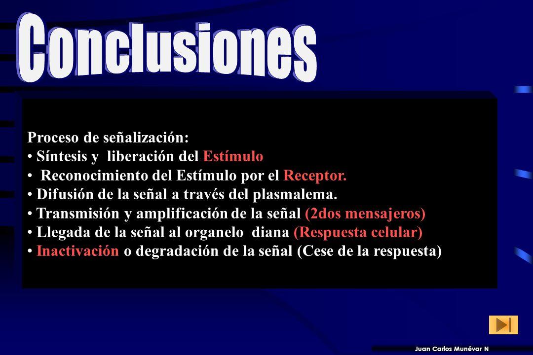 Conclusiones Proceso de señalización: