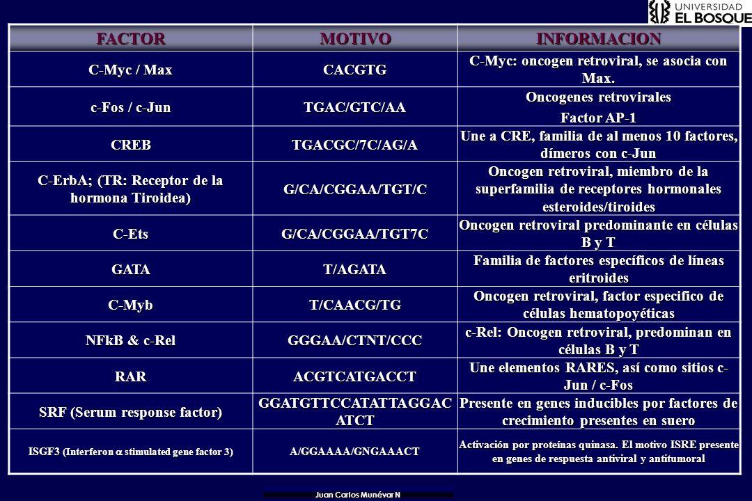 FACTOR MOTIVO INFORMACION