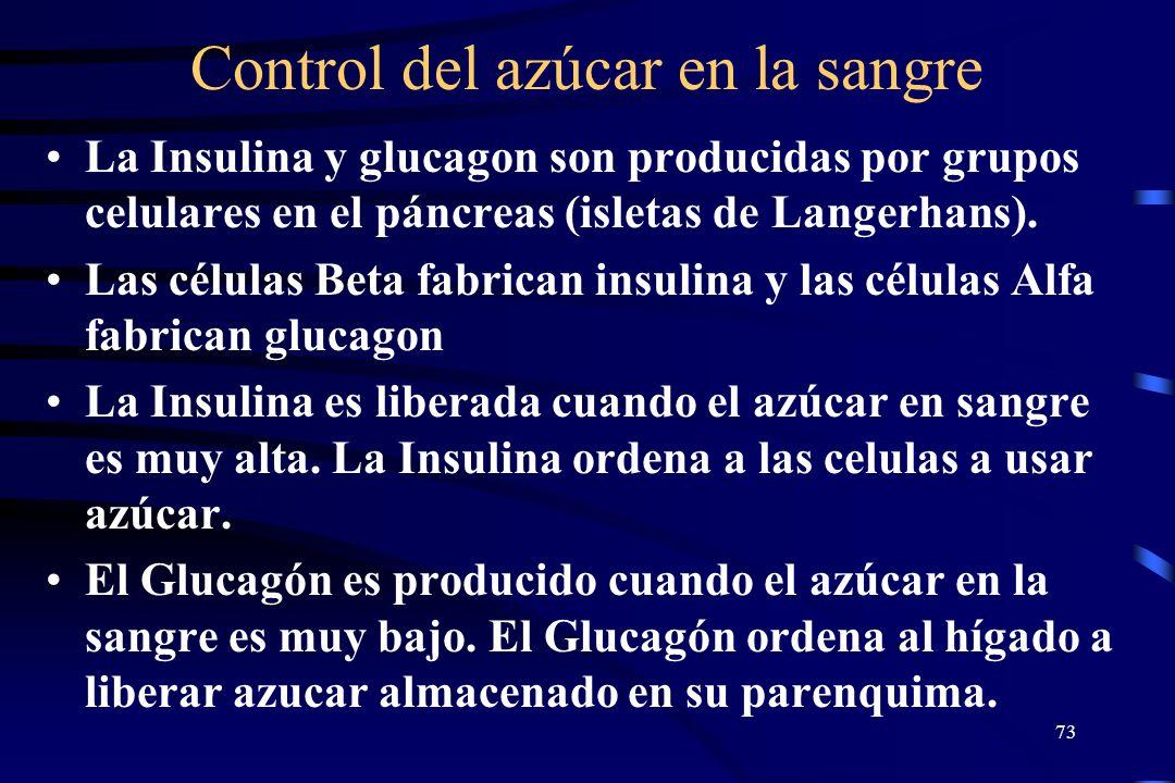 Control del azúcar en la sangre