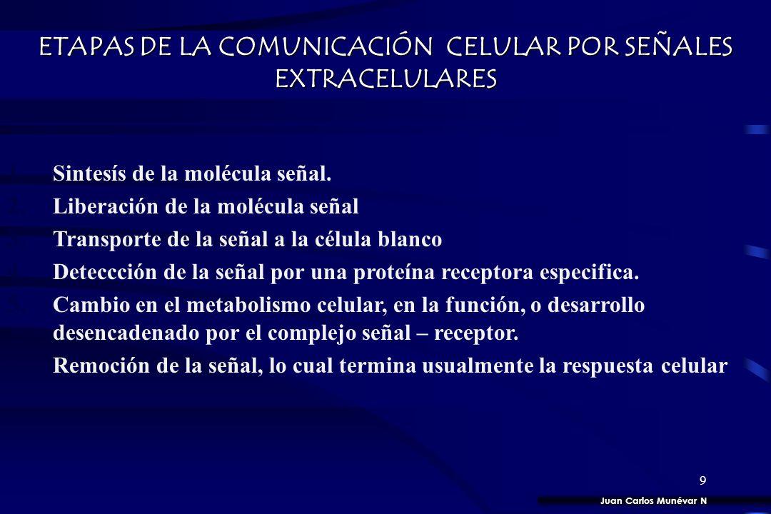 ETAPAS DE LA COMUNICACIÓN CELULAR POR SEÑALES EXTRACELULARES