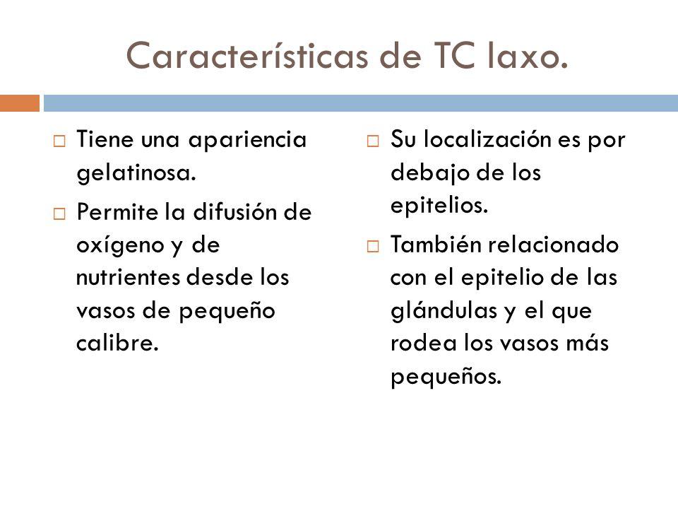 Características de TC laxo.