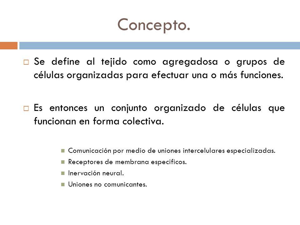 Concepto. Se define al tejido como agregadosa o grupos de células organizadas para efectuar una o más funciones.