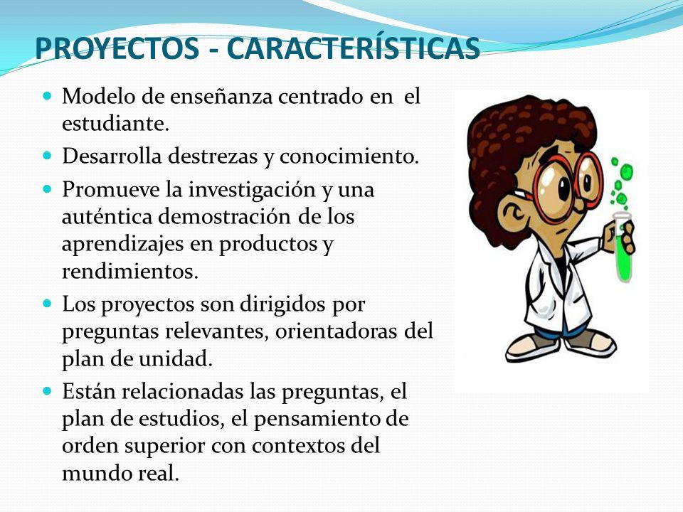 PROYECTOS - CARACTERÍSTICAS
