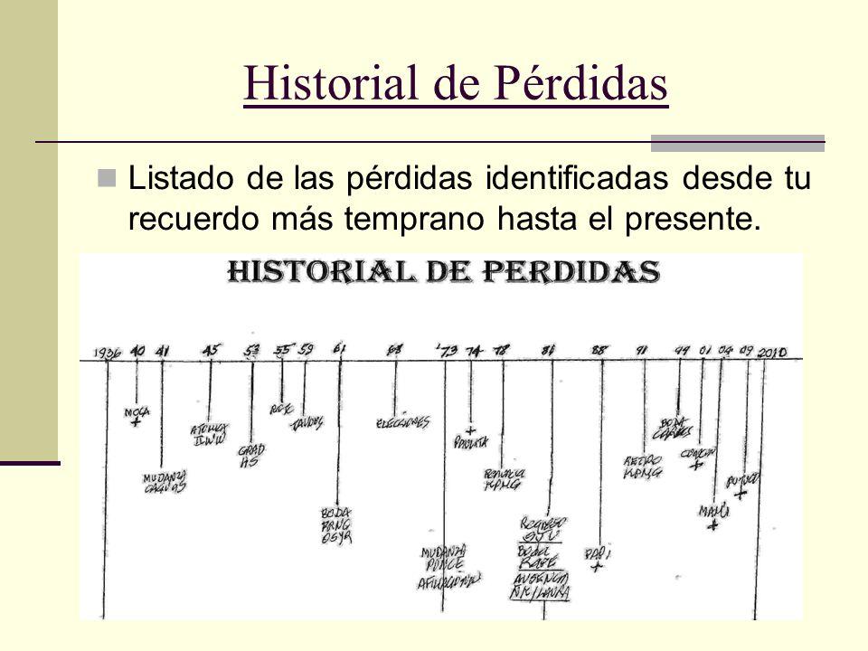 Historial de Pérdidas Listado de las pérdidas identificadas desde tu recuerdo más temprano hasta el presente.