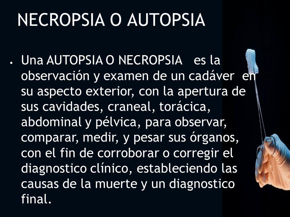 3232 NECROPSIA O AUTOPSIA.